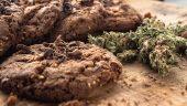 Cannabis Cookie